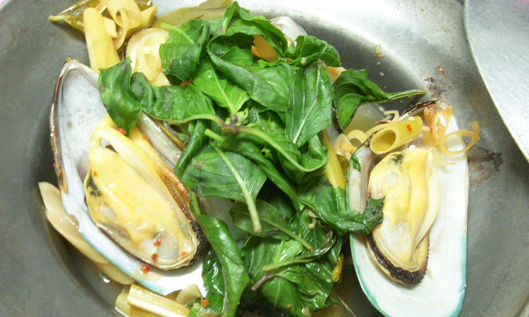 Steamed Green Mussels with Herbs